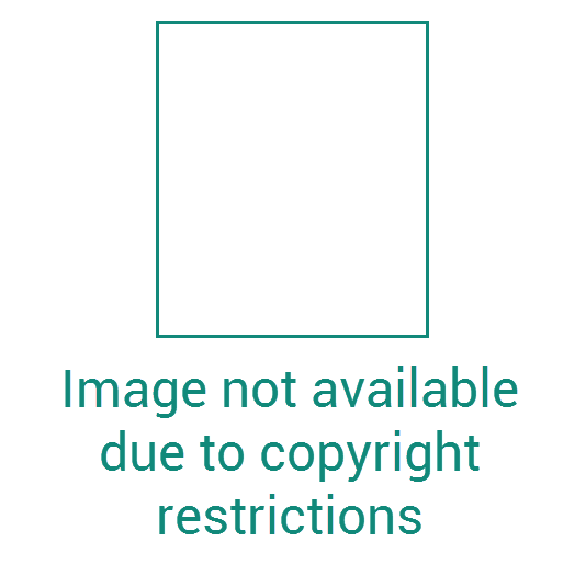 "Ein leeres Quadrat mit dem Text: ""Image not available due to copyright restrictions"""